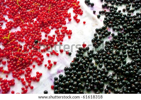 background made of red and black currant - stock photo