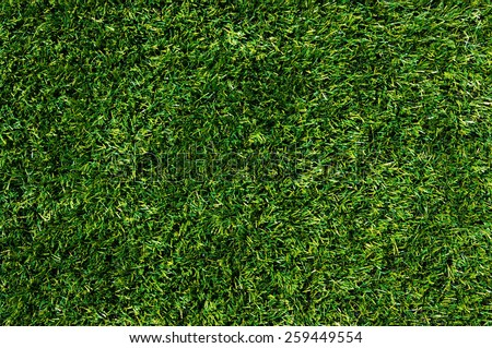 Background of a green grass - stock photo