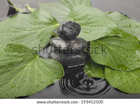 Background of a spa with a stones and a spring of green leaves. - stock photo