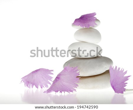 Background of a spa with pile of stones and pink leaves on a white background. - stock photo
