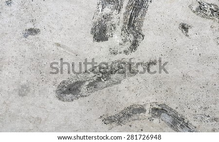 Background of ammonite fossils on a rock - stock photo