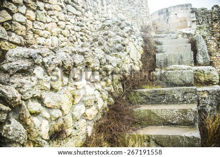 Background of ancient historical old retro vintage aged stone front yellow and gray wall texture, and Staircase in antique style dry autumn yellow grass Empty space No people History backdrop - stock photo