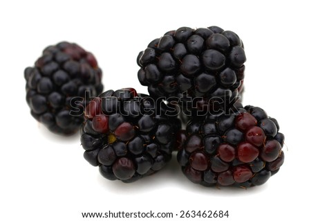 background of blackberries isolated on white  - stock photo