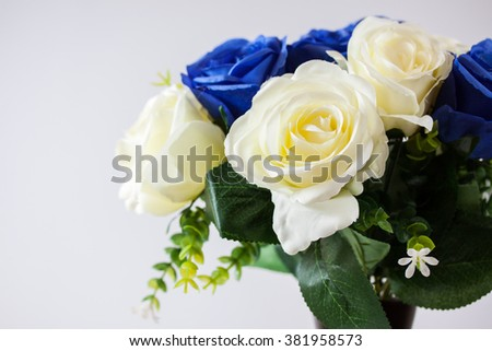 background of blue and white fresh rose flowers close up
