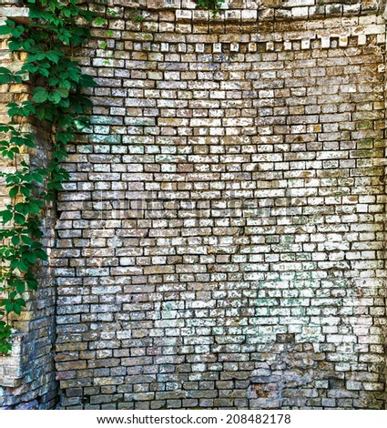 Background of brick wall texture  - stock photo