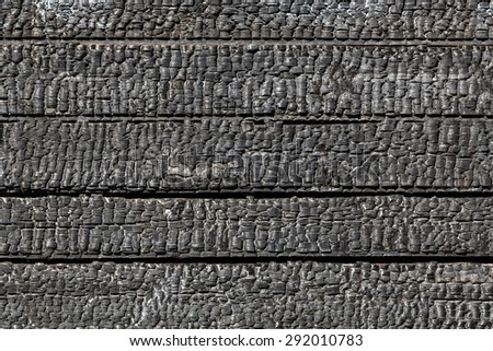 Background of burnt wood texture