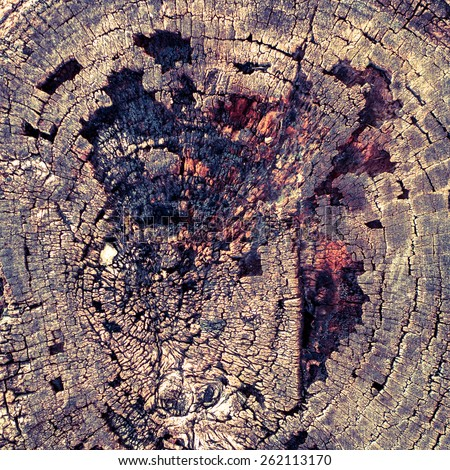 Background of burnt wood texture. Closeup of burnt wooden log. - stock photo