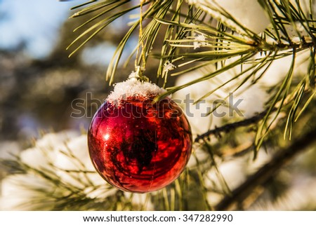 background of Christmas Tree, Christmas toy hang on a branch of spruce sheltered snow - stock photo