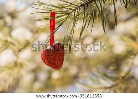 background of Christmas Tree, Christmas toy - one alone red heart hang on a branch of spruce sheltered snow - stock photo