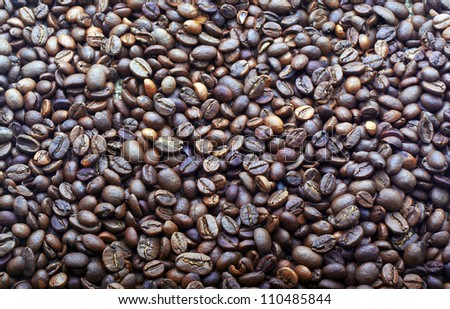 background of cocoa beans - stock photo