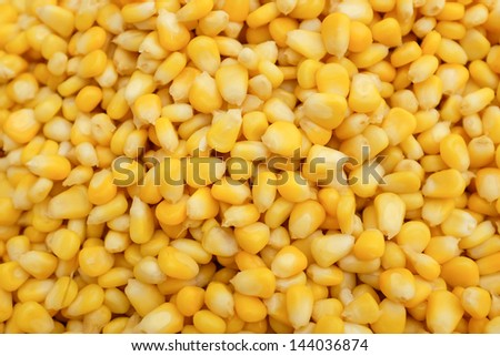 Background of cooked yellow corn grains - stock photo