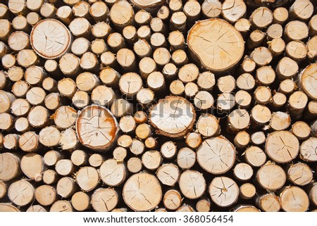 Background of cutting woods - stock photo