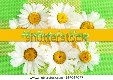 Background of daisies