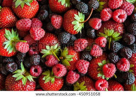 Background of different berries