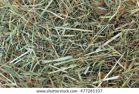 Background of dried grass (hay)