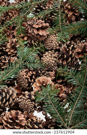 Background  of dried natural pine cones. Conceptual of the Christmas season  - stock photo