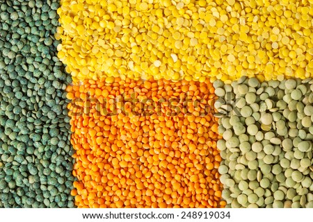 Background of dry lentil different varieties and colors: green french lentils, yellow split, red football, laird - stock photo