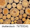 Background of dry teak  logs stacked up on top of each other in a pile - stock photo