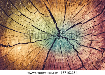 Background of Faded Color Toned Tree Stump with Natural Texture - stock photo