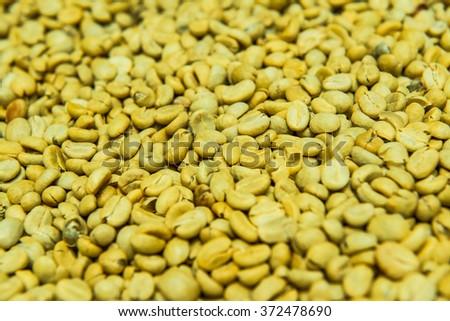 Background of Fresh Coffee Bean, Thailand. - stock photo