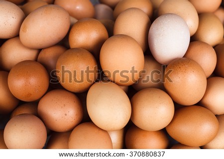 Background of fresh domestic eggs. Organic food.