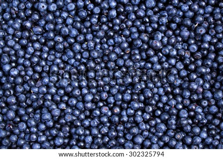 Background of fresh ripe blueberries. Close-up.