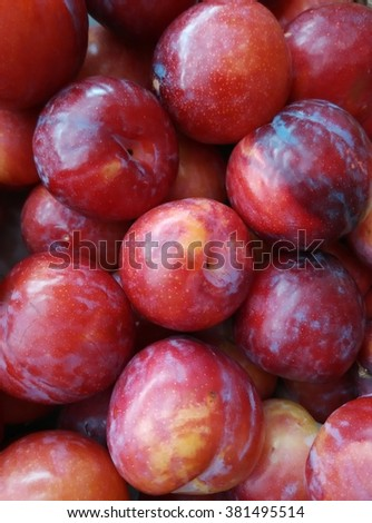 background of fresh sweet organic ripe plums on display at local farmer's market departmental store for sale - stock photo