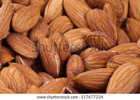 Background of freshly harvested almonds