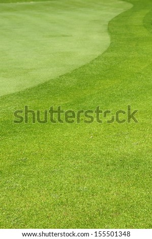 Background of freshly mown lawn in a golf course - stock photo