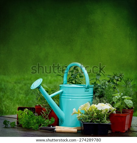 Background of Garden watering can sitting amidst herbs and flowers in square textured image - stock photo
