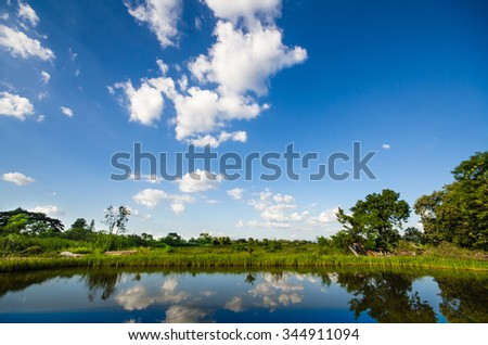 background of gradient blue sky with white cloud and green field, trees and grass field. reflect on water swamp in foreground  - stock photo