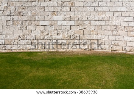 Background of Grass and Wall in Los Angeles, California.