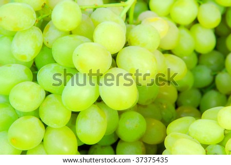 background of green grape clusters