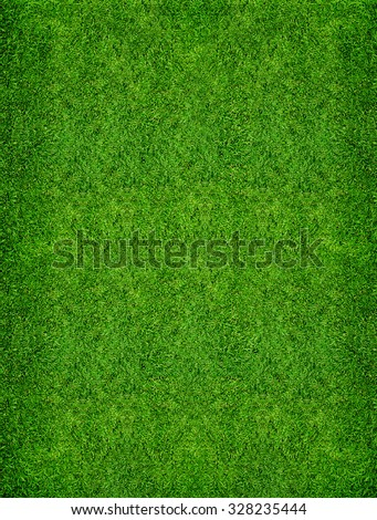 Background of green grass texture. - stock photo