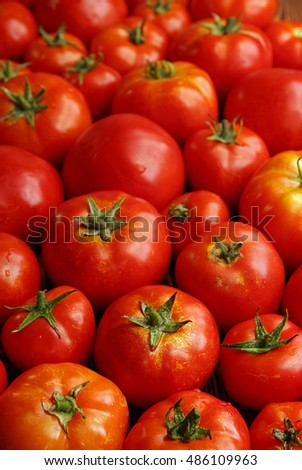 Background of group fresh ripe organic tomatoes