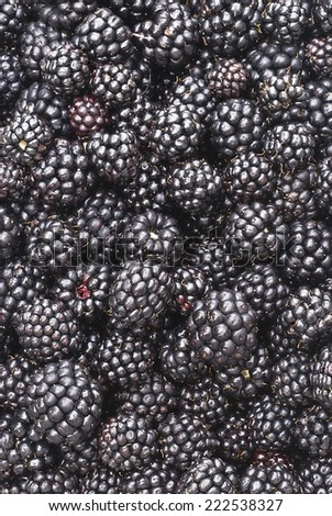 Background of many ripe blackberries lay on the table