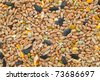 background of mixed seeds, grain, nuts and corn - stock photo