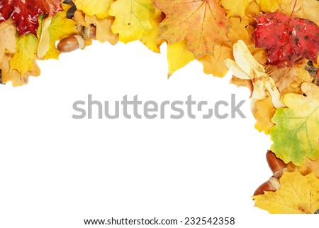 Background of multicolored autumn leaves on a white background - stock photo