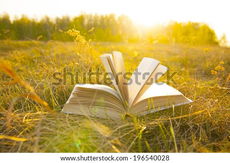 Background of open texture page book with horizon on sunset  lying in autumn fall field on dry yellow green fresh grass on sun set sky and spring forest backdrop Idea of back to school, education - stock photo
