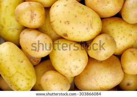 Background of Perfect Ripe Raw Yellow Potatoes Full Body closeup - stock photo