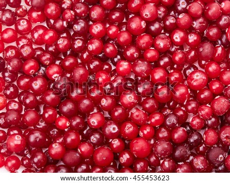 Background of red frozen cranberries