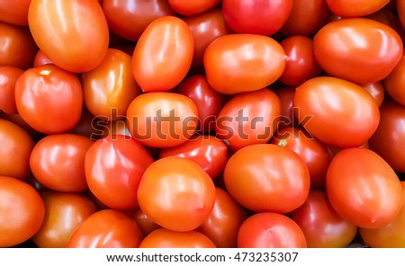 Background of red tomatoes.