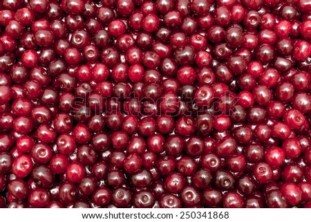 background of ripe juicy cherries. horizontal photo. - stock photo