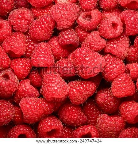 background of ripe juicy raspberries - stock photo