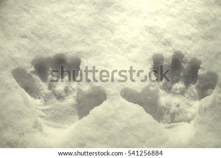 Background of snow hand prints on a winter day, a smile.