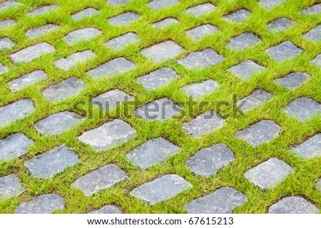 background of street stones between grass - stock photo