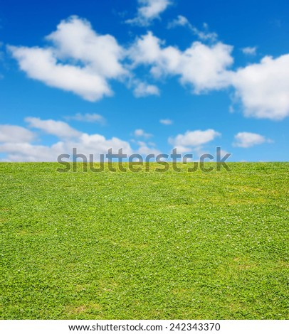 Background of summer Meadow with green fresh grass field and blue sky with light good weather clouds on Warm nature backdrop  - stock photo