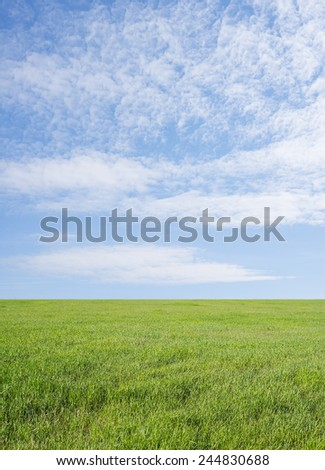Background of summer Meadow with green fresh grass field and blue sky with light good weather clouds on Warm weather nature backdrop  - stock photo