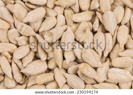Background of sunflower seeds. Whole background. White seeds.