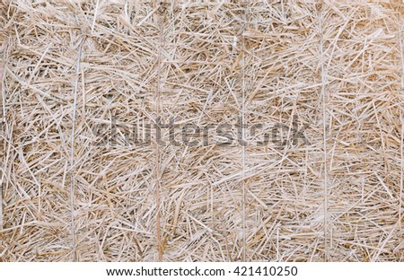 Background of the hay in village in autumn time - stock photo